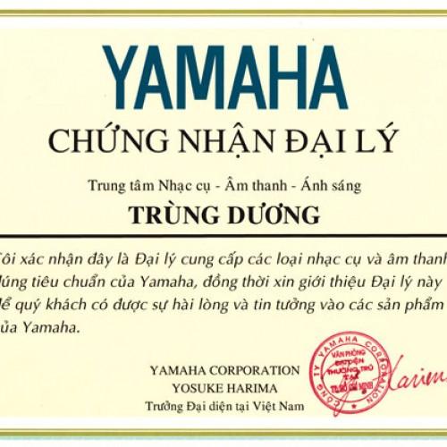 Đại lý chính thức của yamaha Trùng Dương music