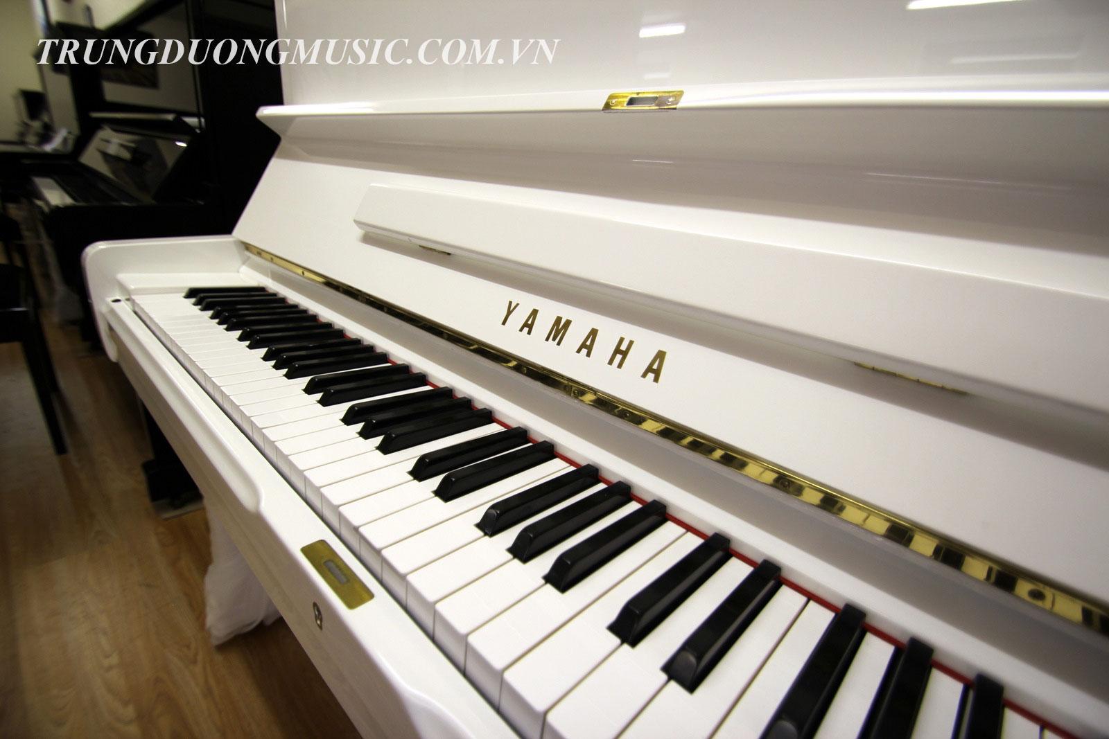 Bán đàn piano uy tín tại TPHCM