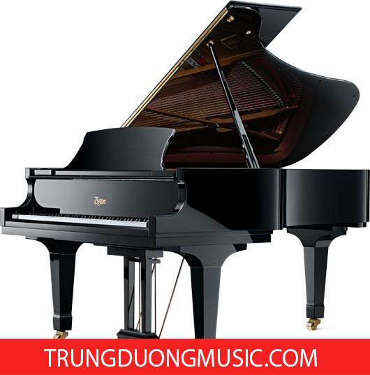 Tìm kiếm nơi bán đàn piano tin cậy tại hcm